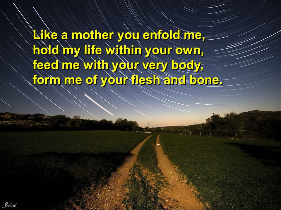 Like a mother you enfold me, hold my life within your own, feed me with your very body, form me of your flesh and bone.