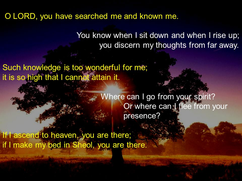 O LORD, you have searched me and known me. You know when I sit down and when I rise up; you discern my thoughts from far away. Such knowledge is too w