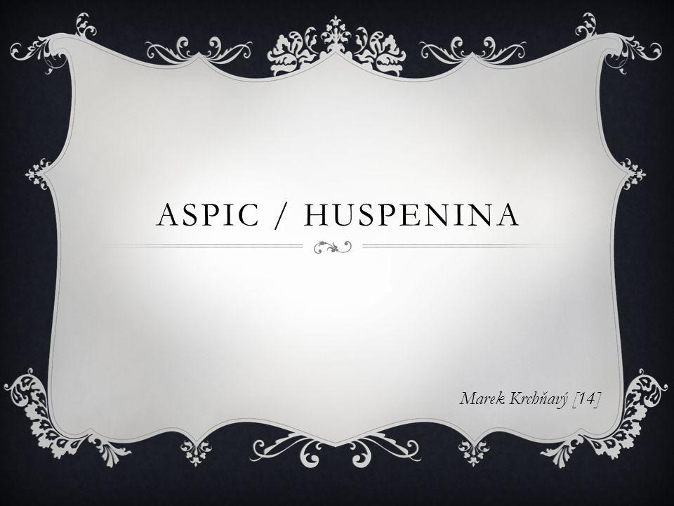 ASPIC / HUSPENINA Marek Krchňavý [14]