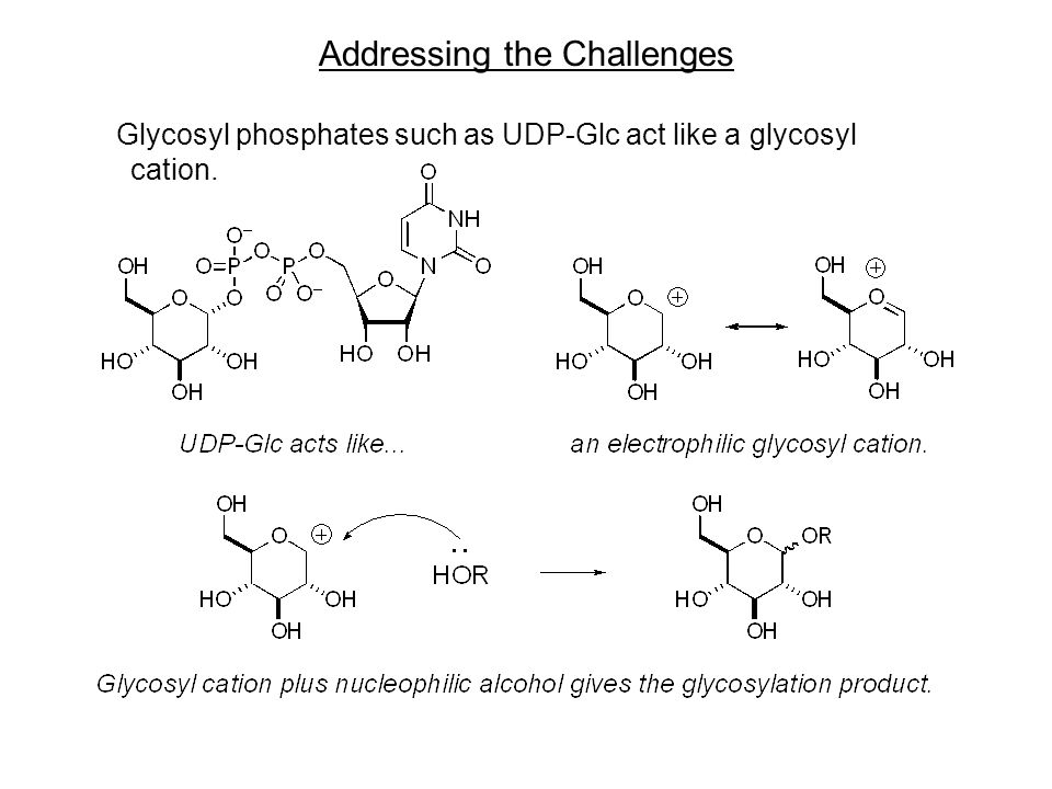 Addressing the Challenges Glycosyl phosphates such as UDP-Glc act like a glycosyl cation.