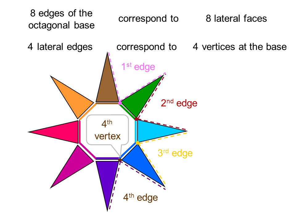 8 edges of the octagonal base correspond to8 lateral faces 2 lateral edgescorrespond to vertices at the base244 1 st edge 2 nd edge 3 rd edge 4 th edge 4 th vertex