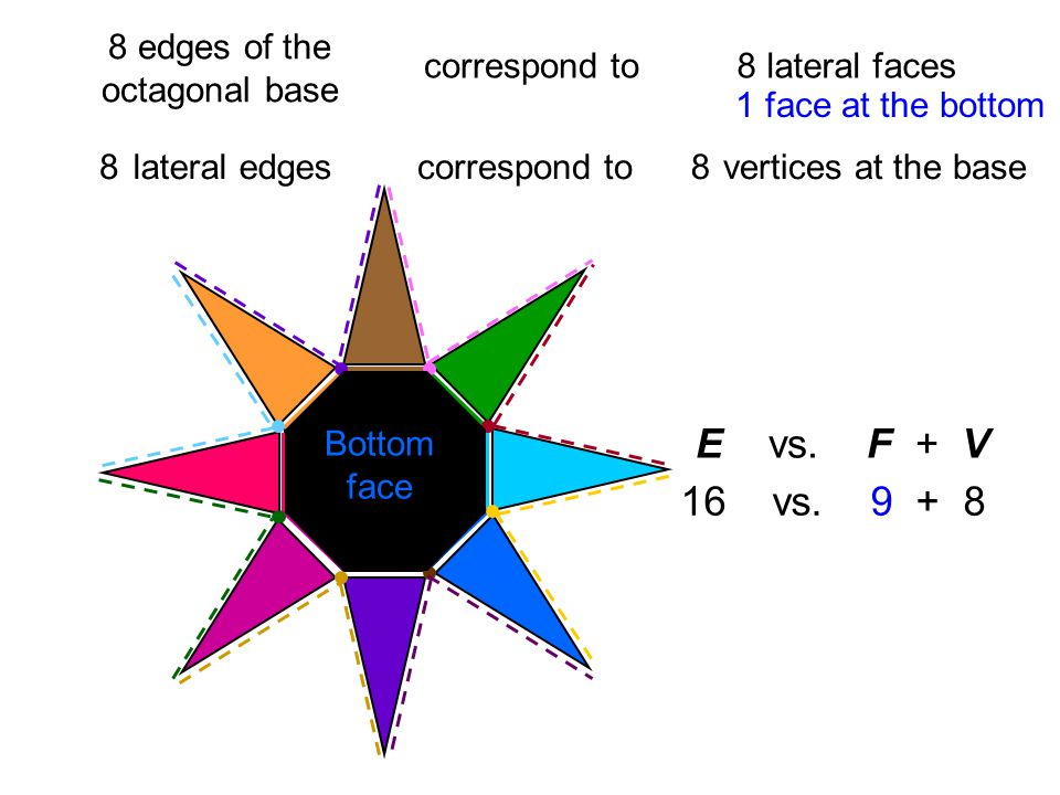 8 edges of the octagonal base correspond to8 lateral faces 2 lateral edgescorrespond to vertices at the base2334455667788 E vs.