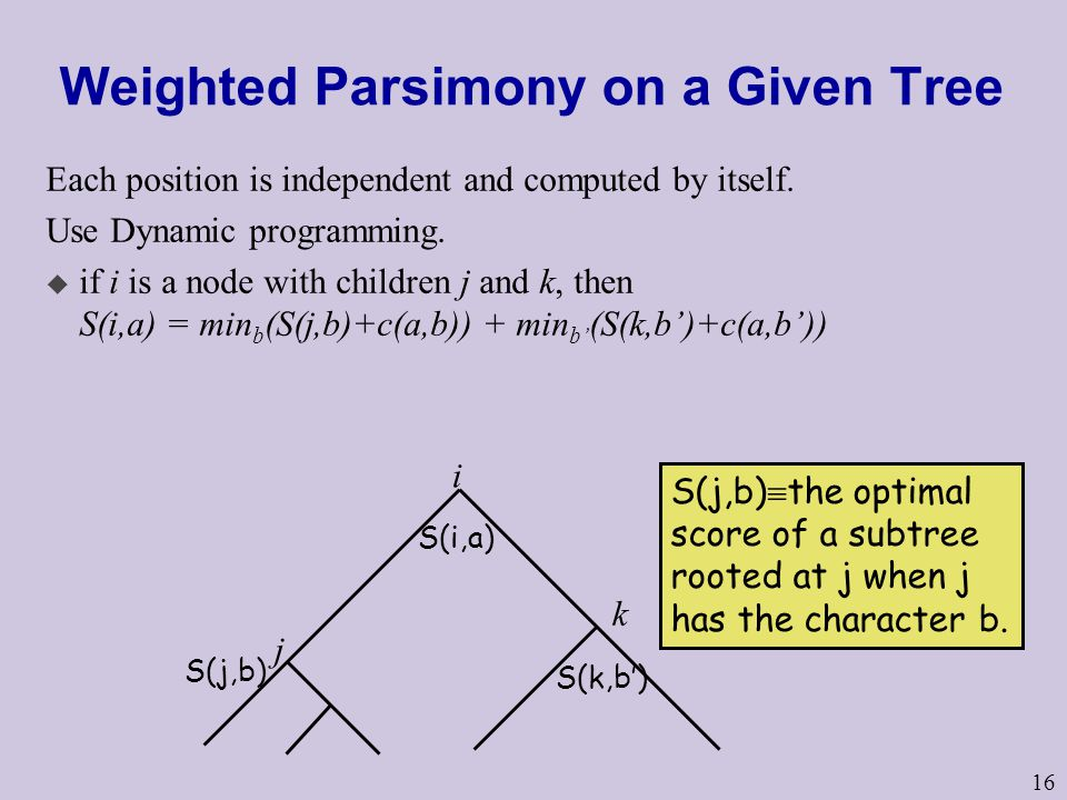 16 Weighted Parsimony on a Given Tree Each position is independent and computed by itself.