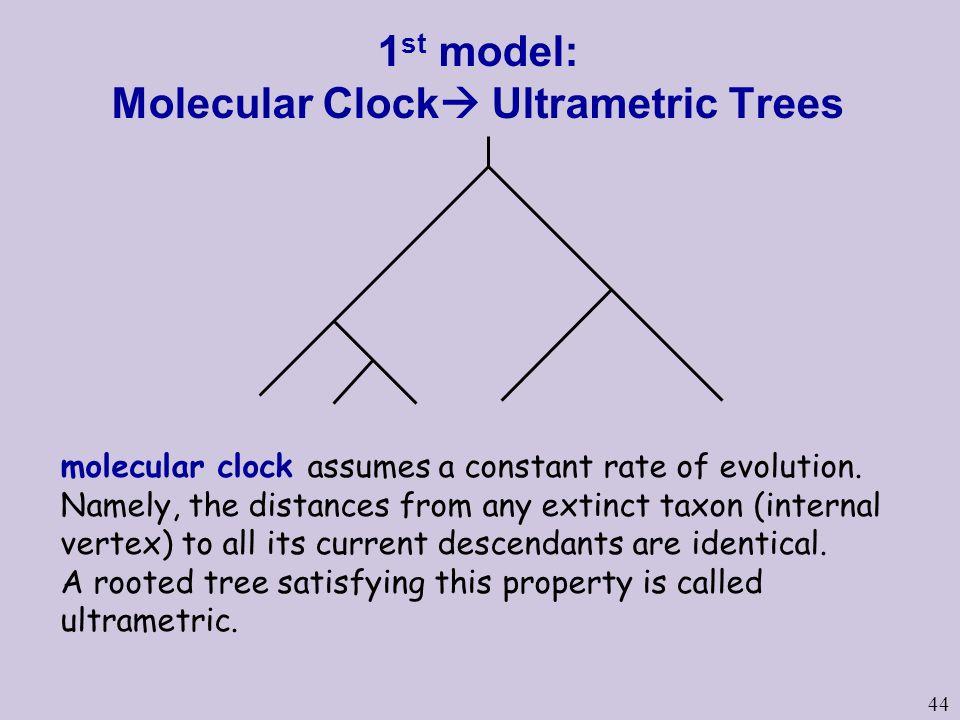 44 1 st model: Molecular Clock  Ultrametric Trees molecular clock assumes a constant rate of evolution.