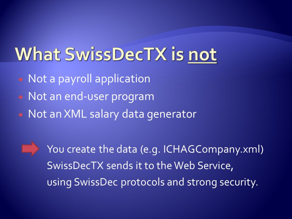  Not a payroll application  Not an end-user program  Not an XML salary data generator You create the data (e.g.
