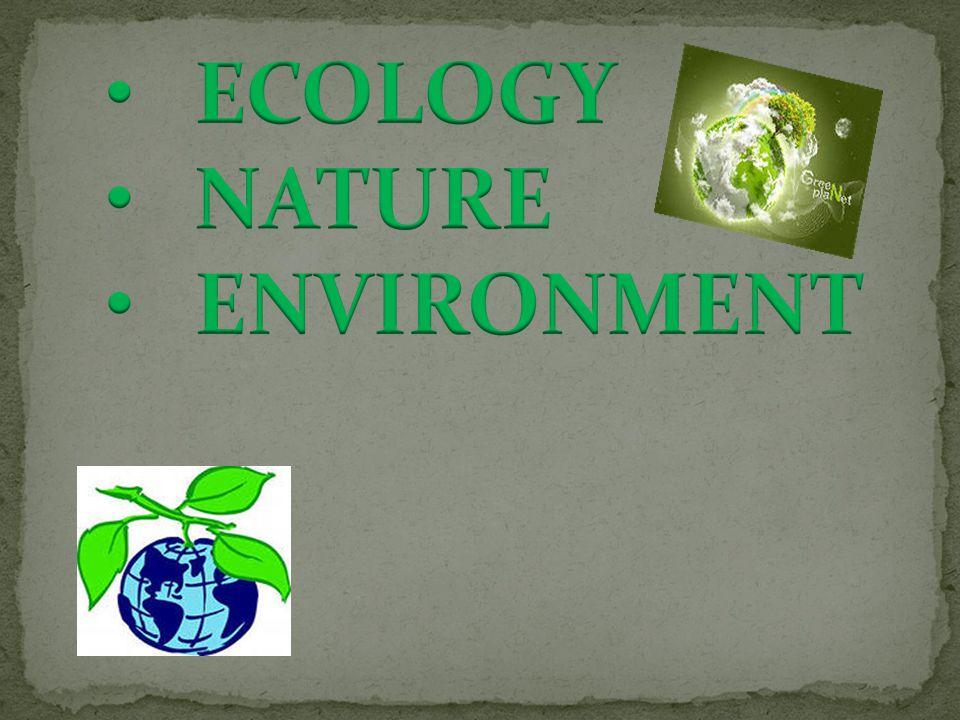 Wild Domestic Save Ozone holes Ozone layer Garbage Breathe Dangerous Disease Climate Atmosphere