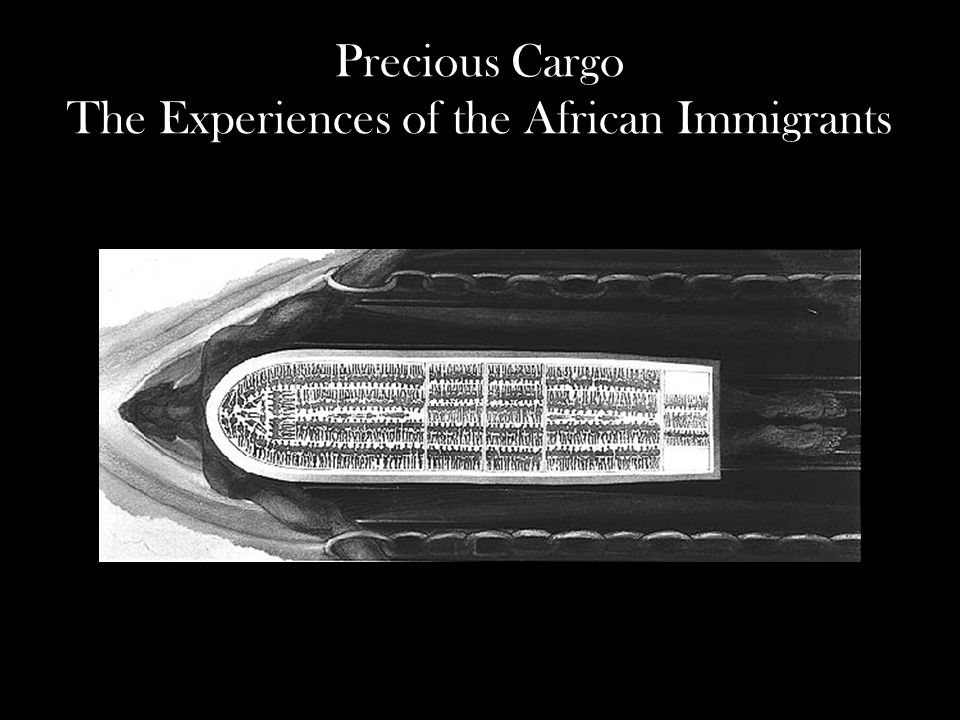 Precious Cargo The Experiences of the African Immigrants