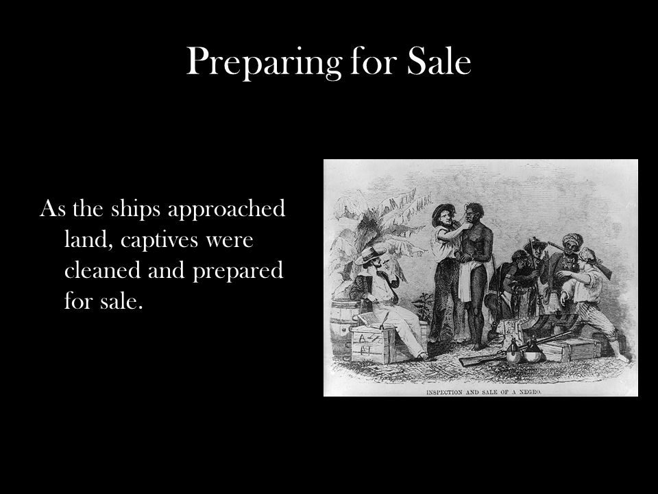 Preparing for Sale As the ships approached land, captives were cleaned and prepared for sale.