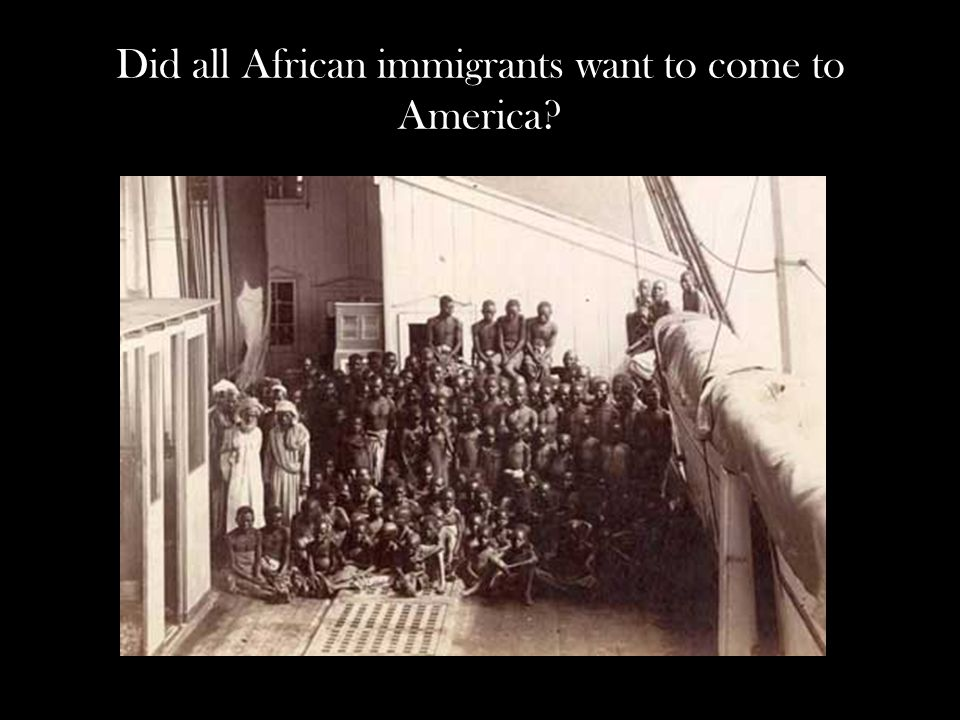 Did all African immigrants want to come to America