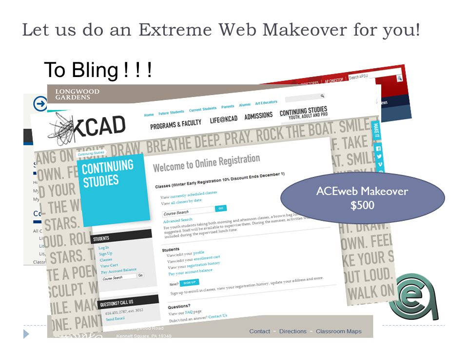Let us do an Extreme Web Makeover for you! To Bling ! ! ! ACEweb Makeover $500
