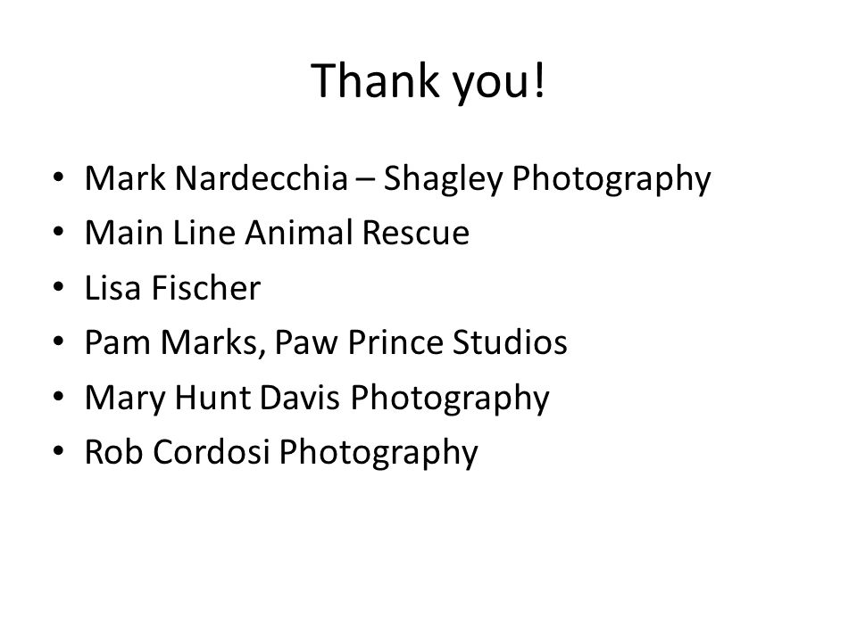 Thank you! Mark Nardecchia – Shagley Photography Main Line Animal Rescue Lisa Fischer Pam Marks, Paw Prince Studios Mary Hunt Davis Photography Rob Co