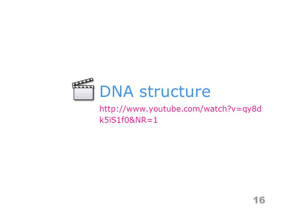 DNA structure 16 http://www.youtube.com/watch v=qy8d k5iS1f0&NR=1