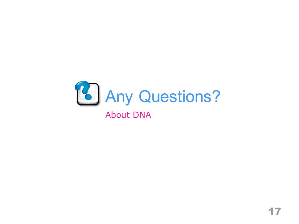 Any Questions 17 About DNA