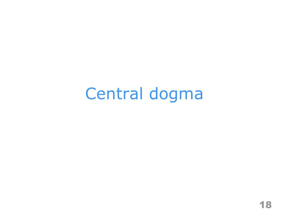 Central dogma 18