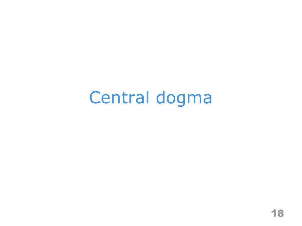 Central dogma 18