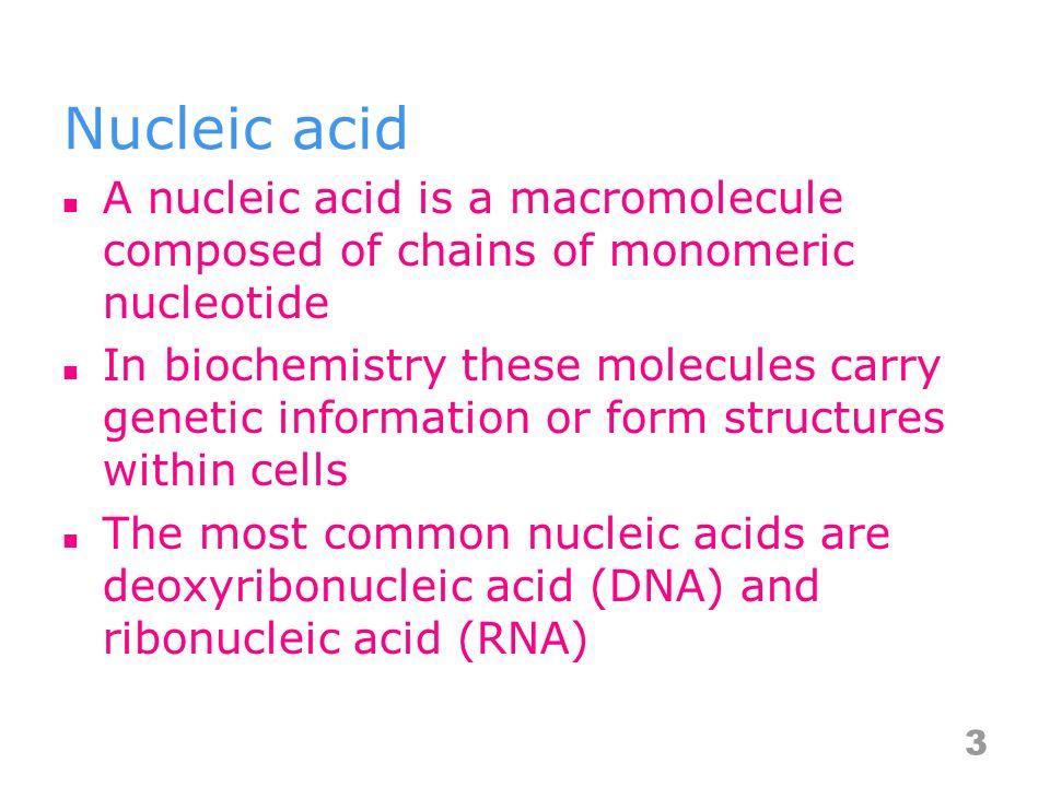DNA transcription 24 http://www.youtube.com/watch?v=vJSm Z3DsntU