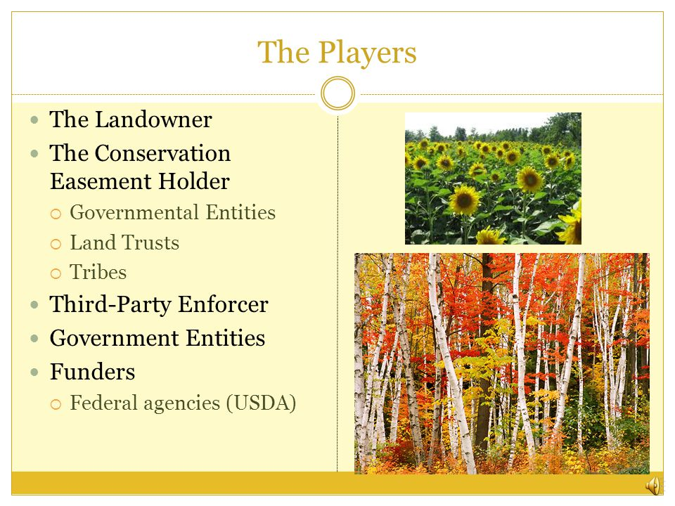 The Players The Landowner The Conservation Easement Holder  Governmental Entities  Land Trusts  Tribes Third-Party Enforcer Government Entities Funders  Federal agencies (USDA)