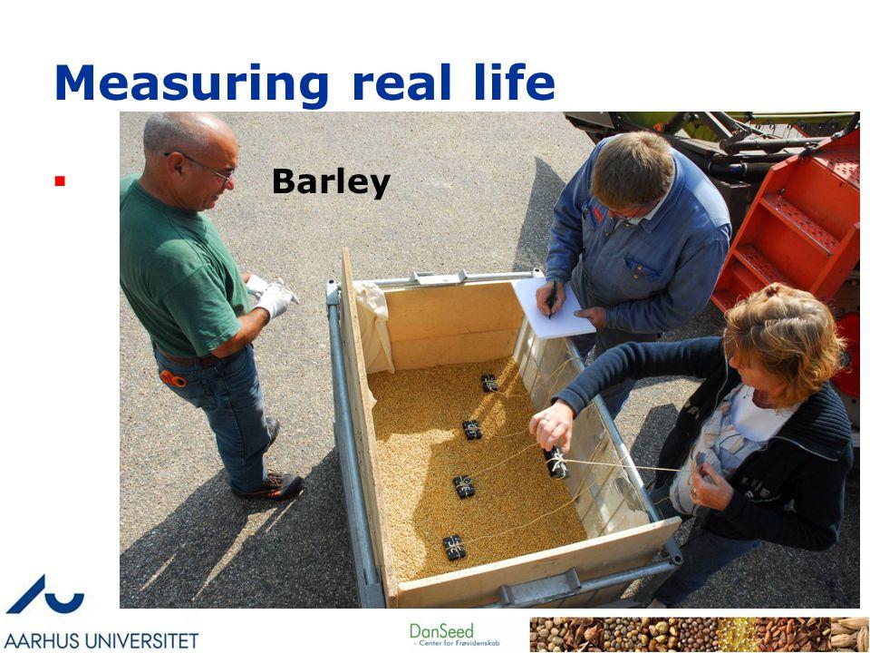 Measuring real life  Barley