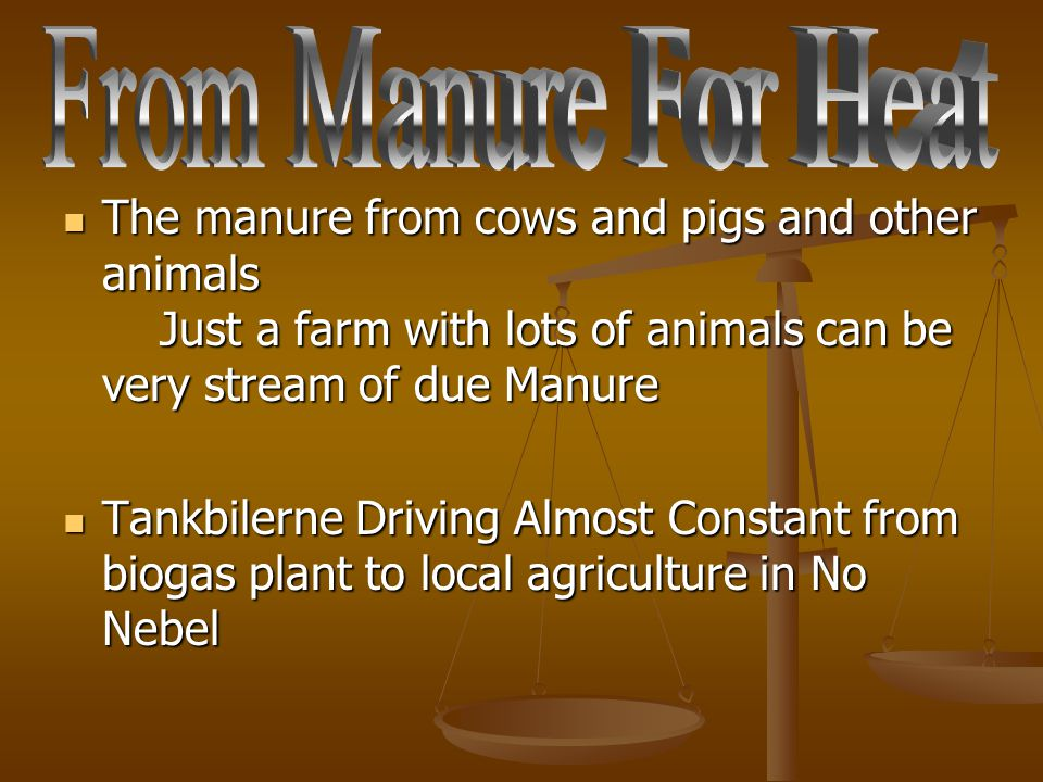 The manure from cows and pigs and other animals Just a farm with lots of animals can be very stream of due Manure The manure from cows and pigs and ot