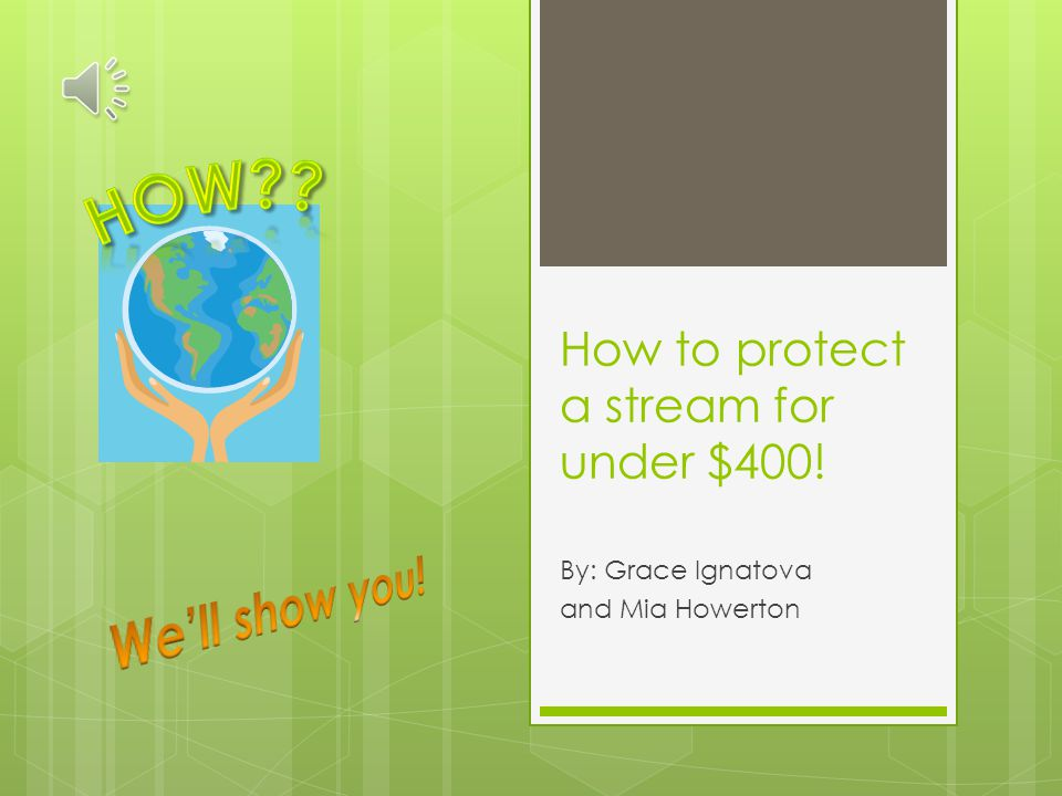 How to protect a stream for under $400! By: Grace Ignatova and Mia Howerton