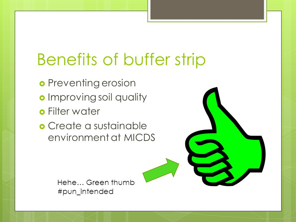Benefits of buffer strip  Preventing erosion  Improving soil quality  Filter water  Create a sustainable environment at MICDS Hehe… Green thumb #pun_intended