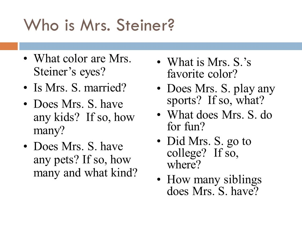 Who is Mrs. Steiner? What color are Mrs. Steiner's eyes? Is Mrs. S. married? Does Mrs. S. have any kids? If so, how many? Does Mrs. S. have any pets?