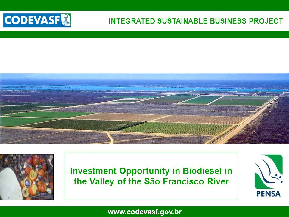 32 www.codevasf.gov.br Oil, Biodiesel and By Products Production in Tons Source: PENSA 30,000.00 35,000.00 40,000.00 Ano 1Ano 2Ano 3Ano 4Ano 5Ano 6Ano 7Ano 8Ano 9 Ano 10Ano 11Ano 12Ano 13Ano 14Ano 15Ano 16Ano 17Ano 18Ano 19Ano 20Ano 21Ano 22Ano 23Ano 24Ano 25Ano 26Ano 27Ano 28Ano 29Ano 30 Oil, Biodiesel and By Products Production in Tons Palm OilPalmist OilBiodieselBiodiesel FFACake