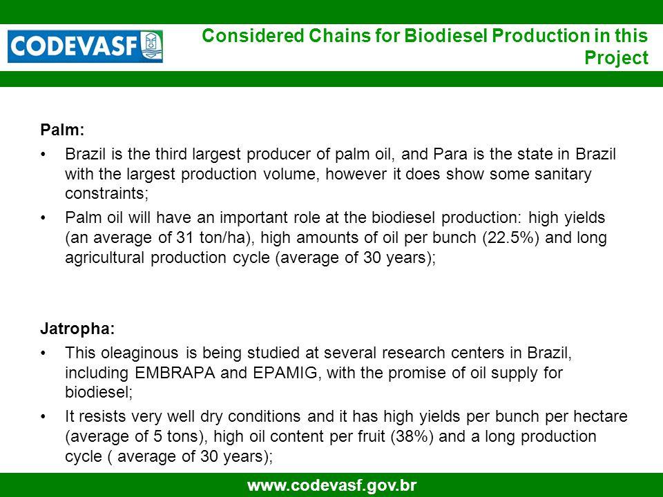 27 www.codevasf.gov.br Synthesis Agriculture Processing ProductUnity VolumePrice Gross Revenue Biodiesel (100%)Litros30,561,300.00R$ 2.01R$ 80,816,829.55 Palmist oilTon 3,071.25 R$ 1,665.00R$ 5,113,631.25 CakeTon 4,252.50 R$ 116.55R$ 111,516.50 ProductUnity VolumePriceGross Revenue Palm Bunches (FFB)Ton157,500R$ 172.05R$ 27,097,875.00 Biodiesel (100%), Palmist e Cake Producing Area ( n há(s)) ==>5,000.00