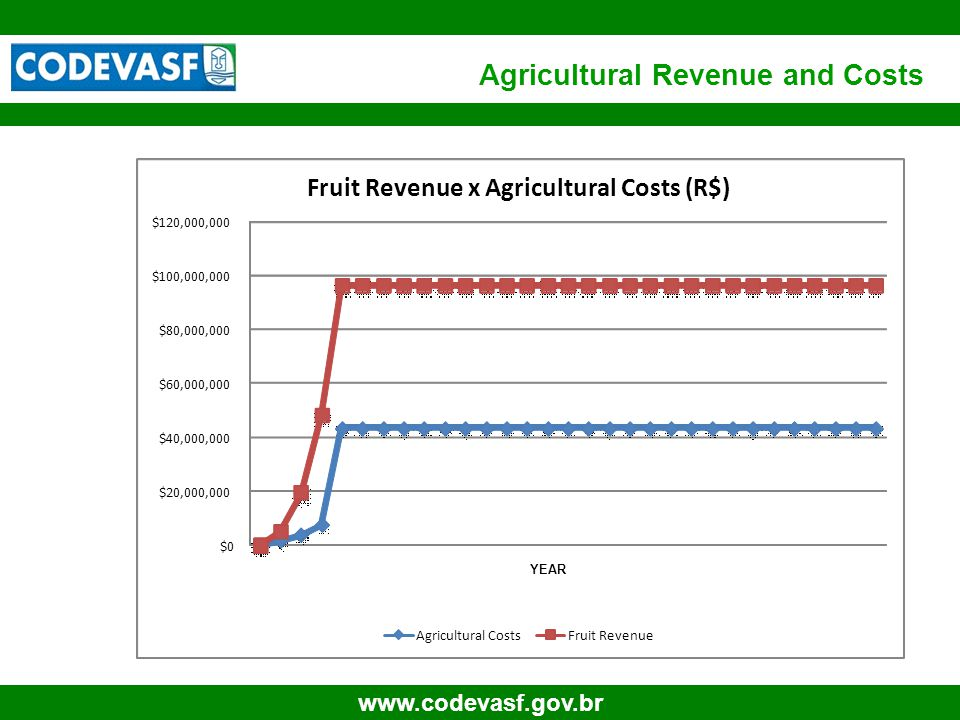 60 www.codevasf.gov.br Agricultural Revenue and Costs $0 $20,000,000 $40,000,000 $60,000,000 $80,000,000 $100,000,000 $120,000,000 Fruit Revenue x Agr