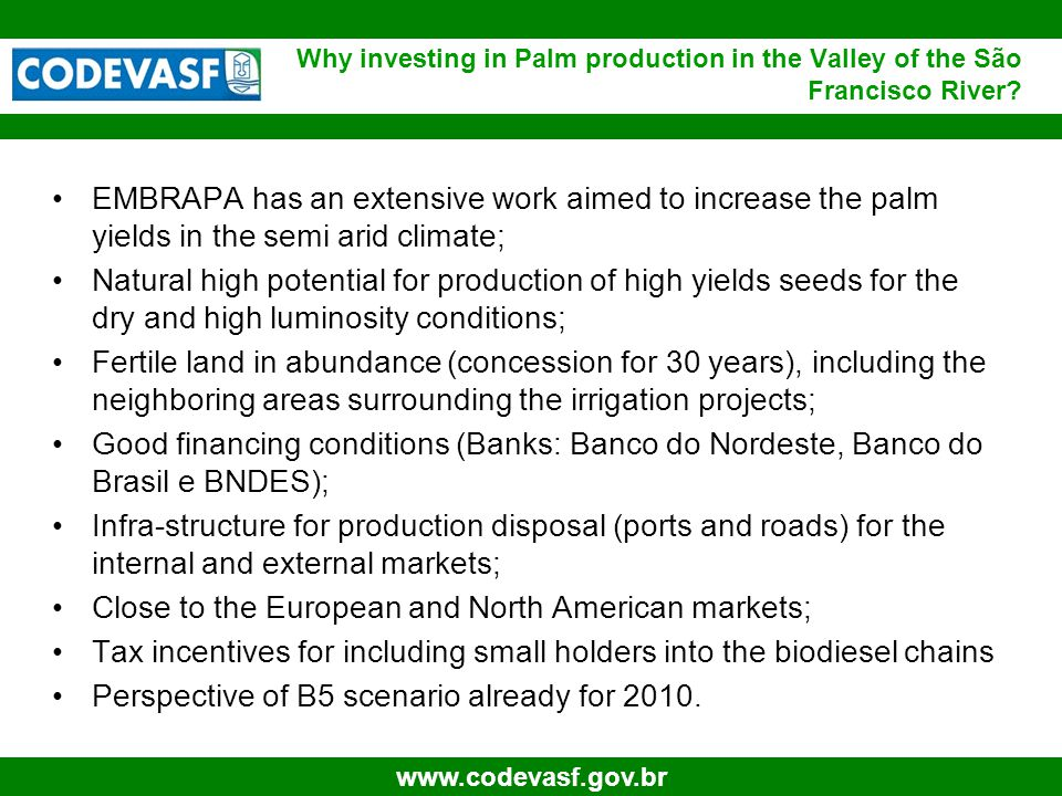 8 www.codevasf.gov.br EMBRAPA has an extensive work aimed to increase the palm yields in the semi arid climate; Natural high potential for production