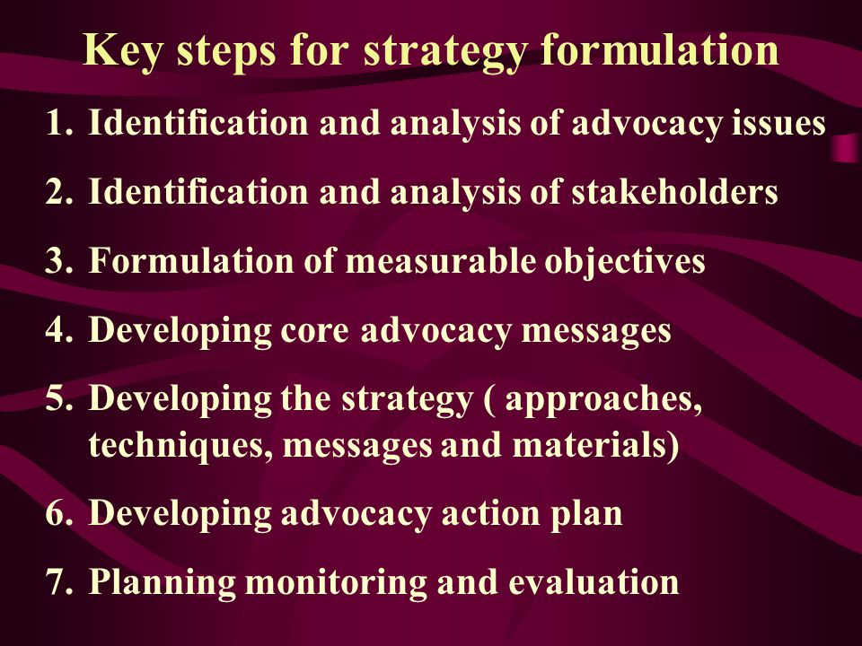 Advocacy Strategic Planning Model Research Issues/ Problems Goals/ Objectives Strategy Development Coalition building Networking Institution building