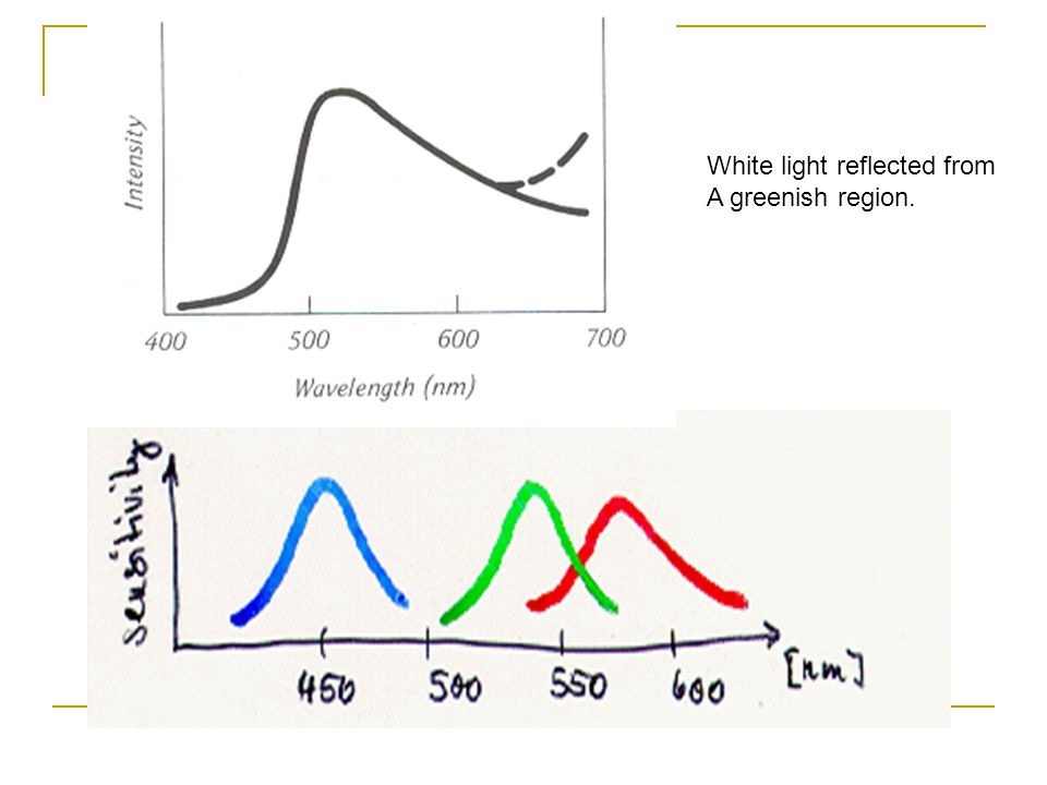 White light reflected from A greenish region.