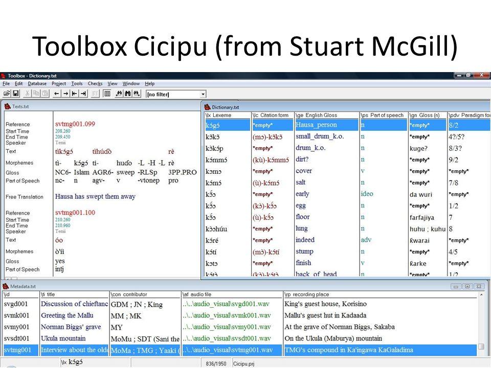 Toolbox Cicipu (from Stuart McGill)
