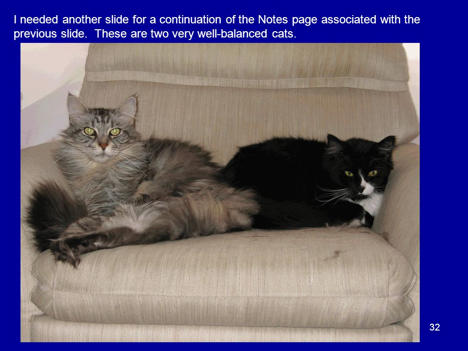 32 I needed another slide for a continuation of the Notes page associated with the previous slide. These are two very well-balanced cats.