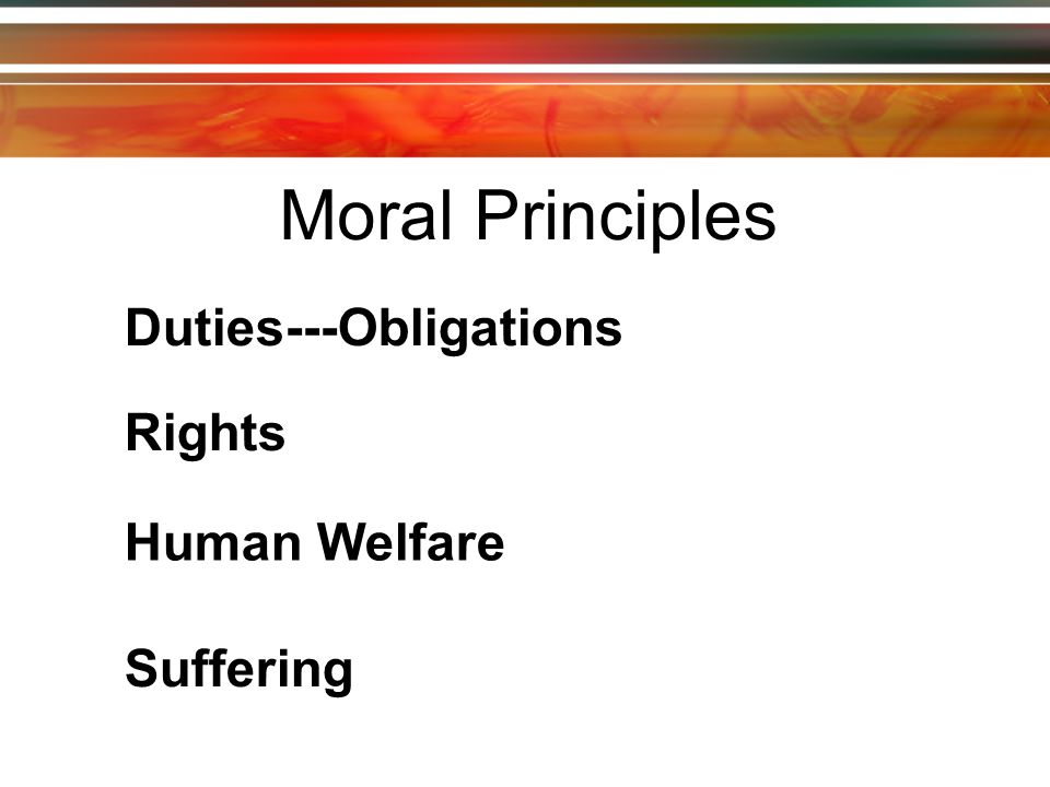 Moral Principles Duties---Obligations Rights Human Welfare Suffering