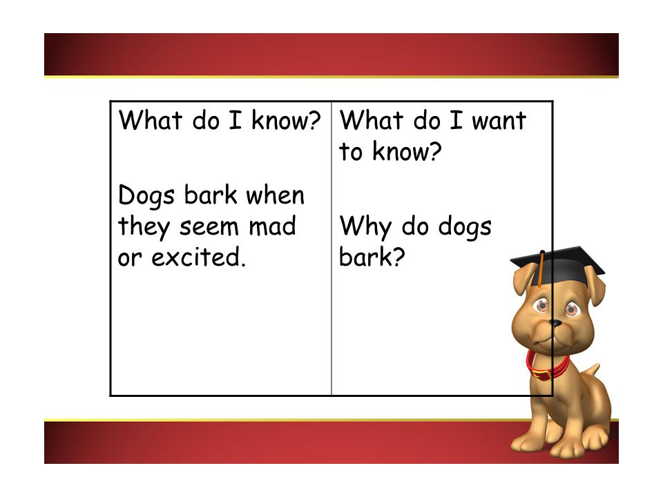 What do I know? Dogs bark when they seem mad or excited. What do I want to know? Why do dogs bark?
