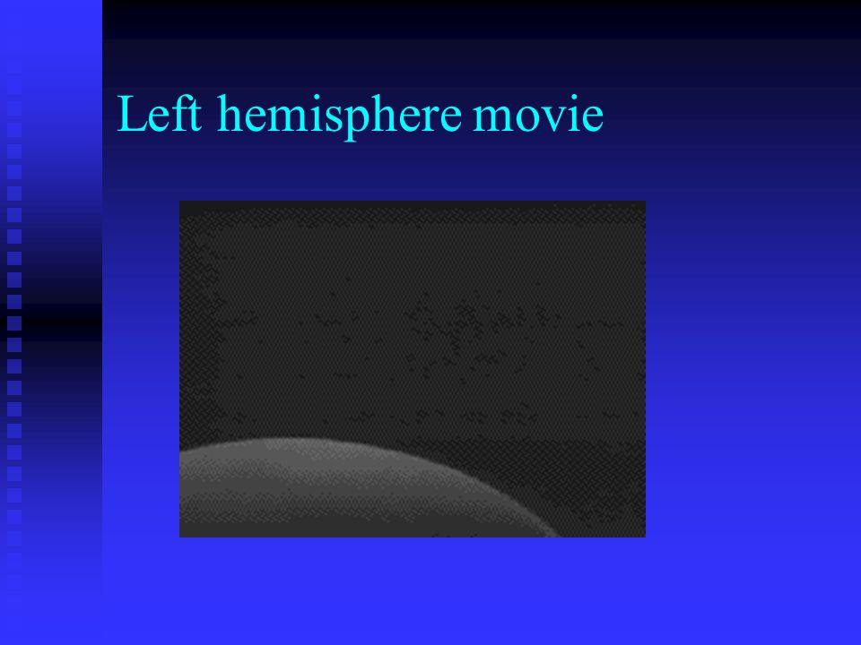 Left hemisphere movie