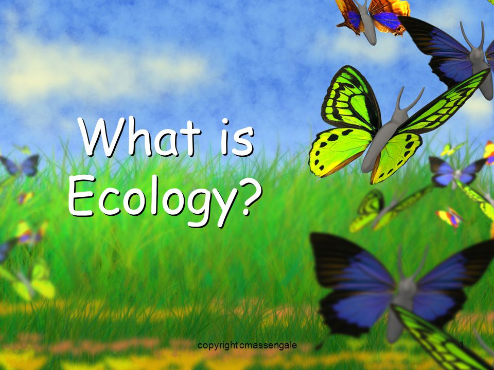 1 What is Ecology? copyright cmassengale