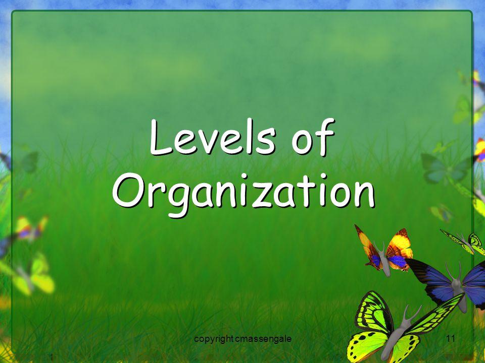 11 Levels of Organization copyright cmassengale