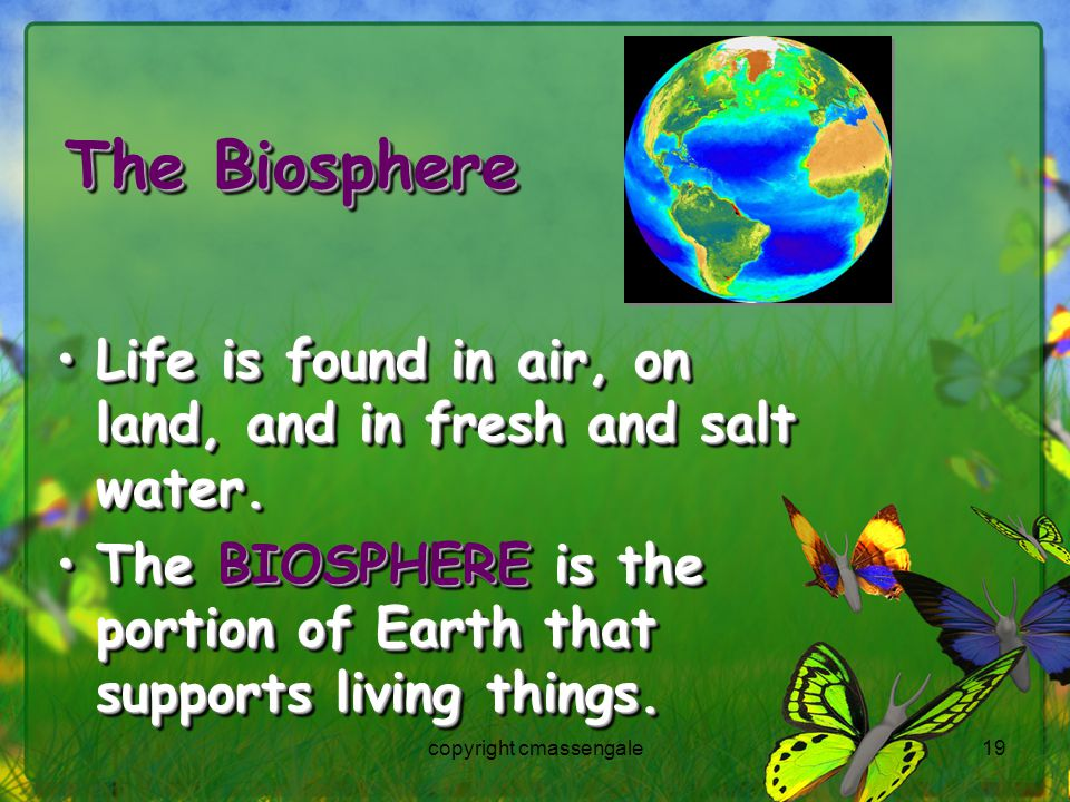 19 The Biosphere Life is found in air, on land, and in fresh and salt water.Life is found in air, on land, and in fresh and salt water.