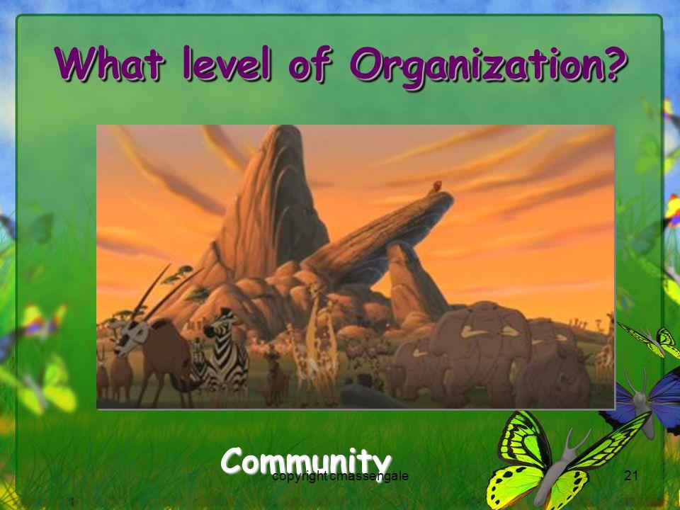 21 What level of Organization Community copyright cmassengale