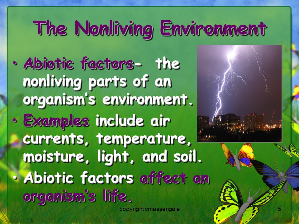 5 The Nonliving Environment Abiotic factors- the nonliving parts of an organism's environment.Abiotic factors- the nonliving parts of an organism's environment.