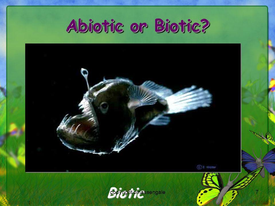 7 Abiotic or Biotic? Biotic copyright cmassengale