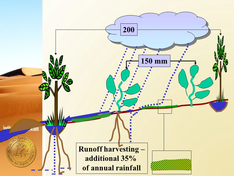 Runoff harvesting – additional 35% of annual rainfall 150 mm200