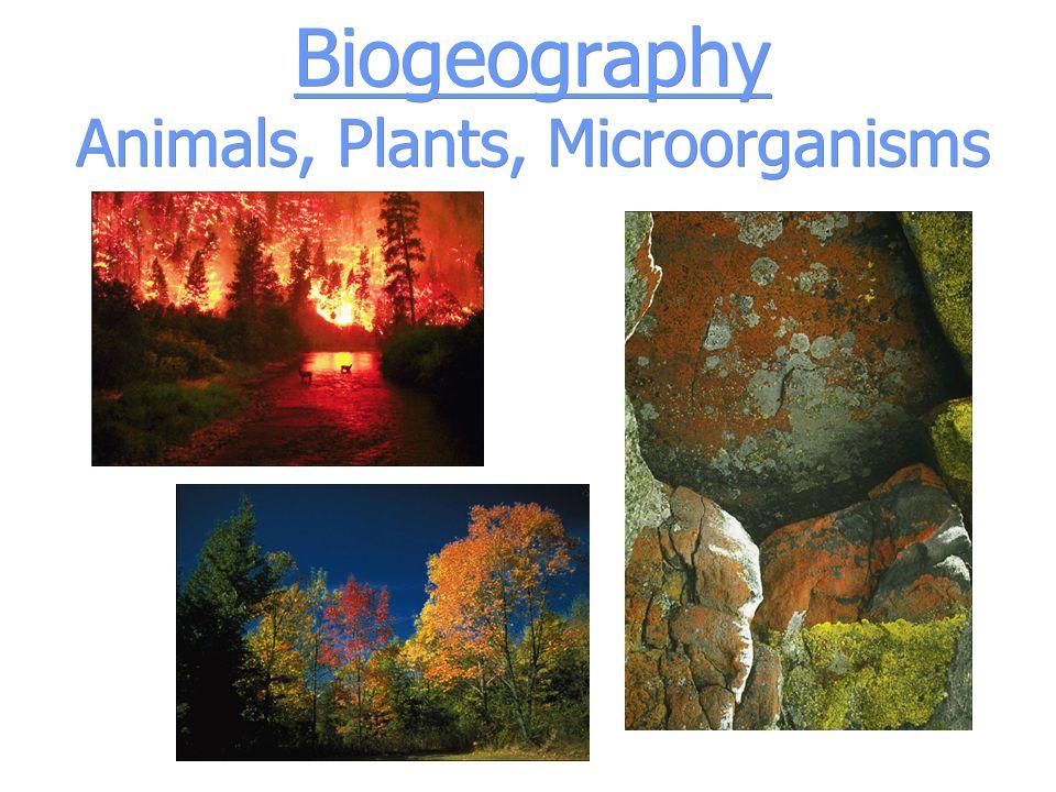 Biogeography Animals, Plants, Microorganisms