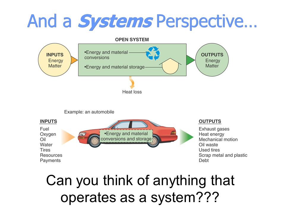 And a Systems Perspective… Can you think of anything that operates as a system???