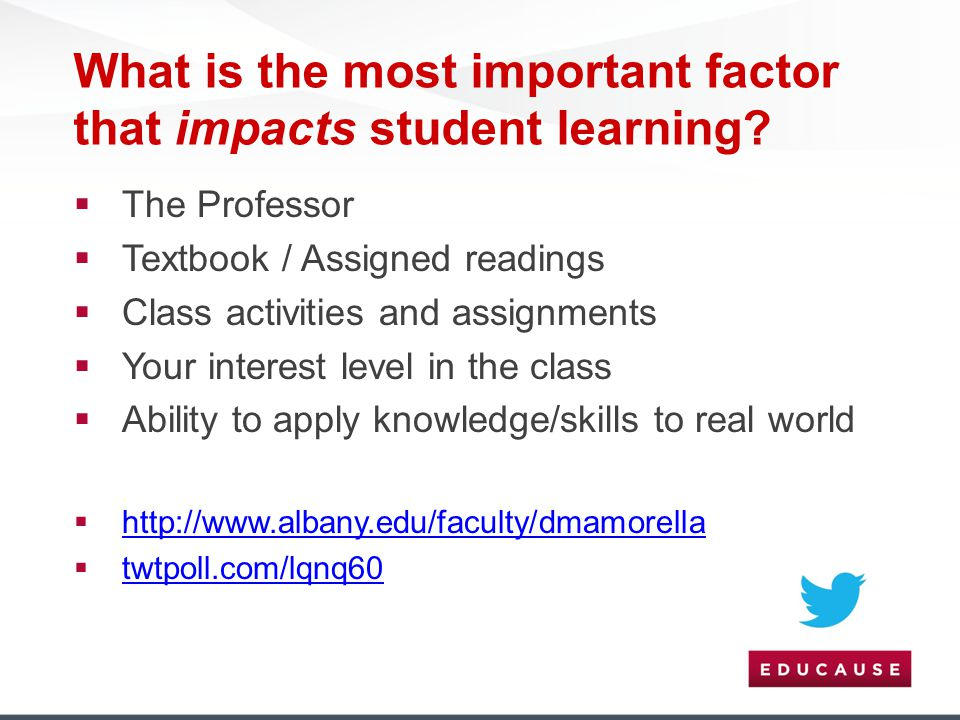 What is the most important factor that impacts student learning?  The Professor  Textbook / Assigned readings  Class activities and assignments  Y