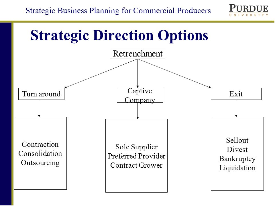Strategic Business Planning for Commercial Producers Business Unit Growth Matrix –Based on EFAS and IFAS –4 Quadrants Cash Cows – Low EFAS, High IFAS –Normally Delay Strategy Stars – High EFAS, High IFAS –Normally Growth Strategy Question Marks – High EFAS, Low IFAS –Growth or Delay Strategy Dogs – Low EFAS, Low IFAS –Retrenchment Strategy Which Units to Grow?