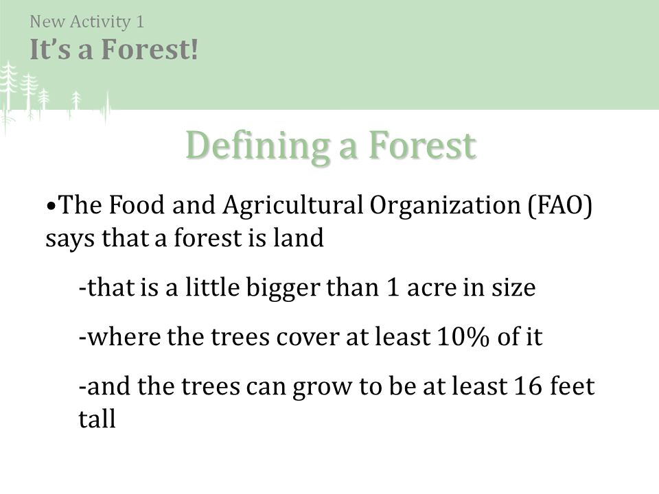 Defining a Forest The Food and Agricultural Organization (FAO) says that a forest is land -that is a little bigger than 1 acre in size -where the trees cover at least 10% of it -and the trees can grow to be at least 16 feet tall