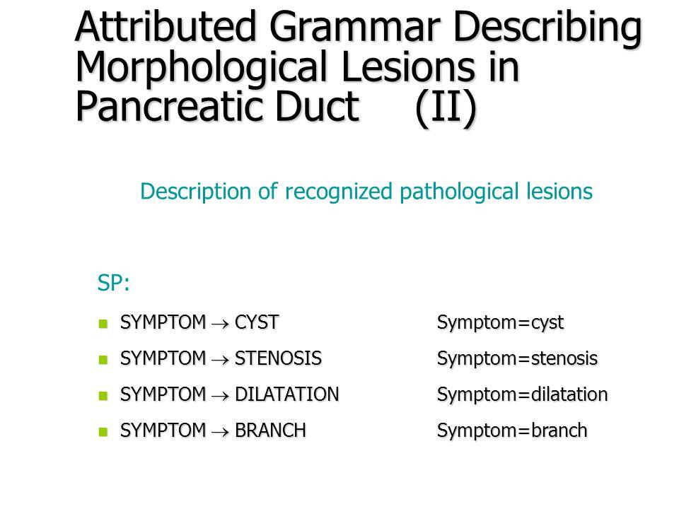 Attributed Grammar Describing Morphological Lesions in Pancreatic Duct (I) G = (V N, V T, SP, STS) V N – non-terminal symbols set V T – terminal symbols set SP – production set, STS – starting symbol V N = {SYMPTOM, CYST, STENOSIS, DILATATION, BRANCH, HI, LO, P, S, G, I, N, NS, NG, NI, NN} V T = {p, s, ns, g, ng, i, ni, n, nn}